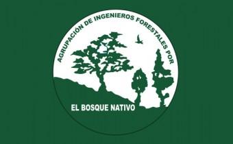 logo_aifbn