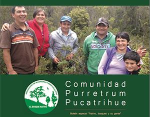 purretrum_pucatrihue