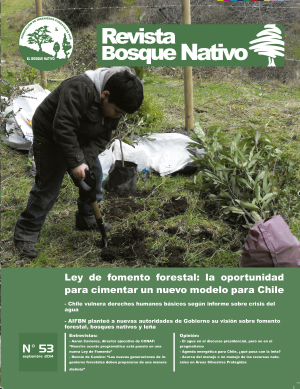 portada_revista_bosque_nativo53